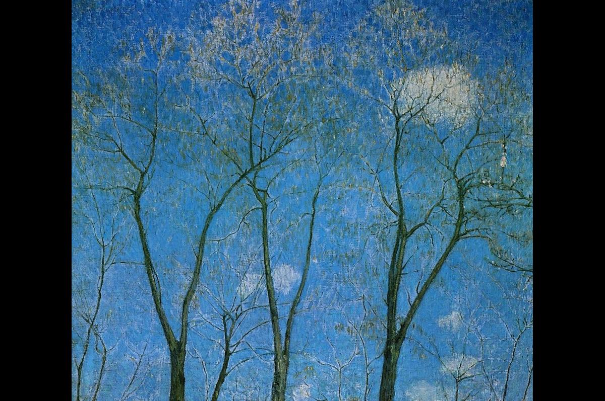 Михаил Ларионов. Акации весной (Верхушки акаций), 1904