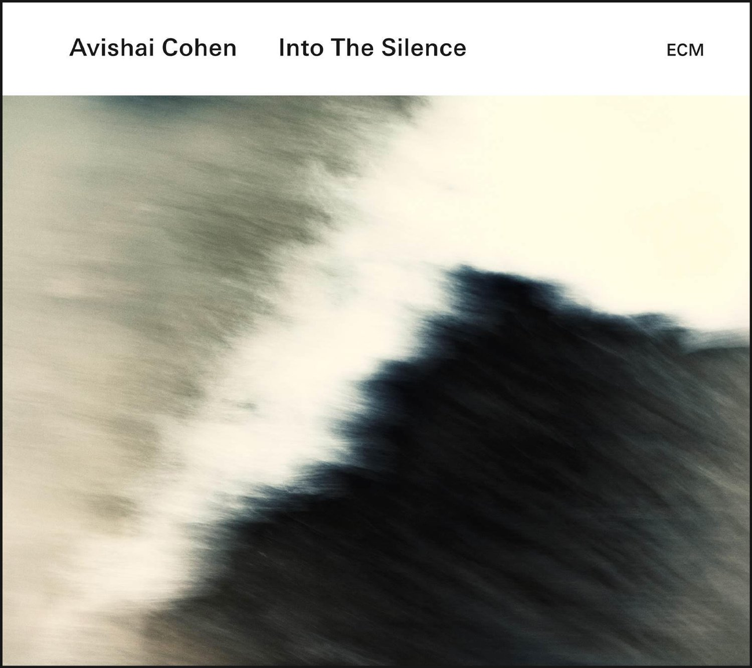 Avishai Cohen «Into the Silence»