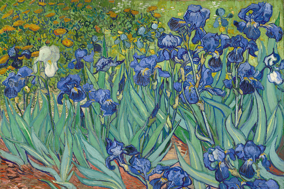 «Ирисы» Винсента Ван Гога, 1889.