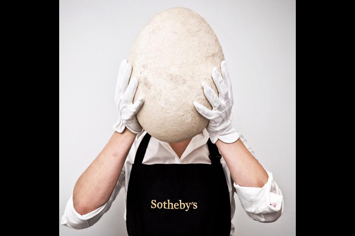 Sotheby′s представил в галерее гигантское яйцо, 400 лет назад оставленное на Мадагаскаре Слоновой Птицей, самая большой из некогда живших на земном шаре / фото @sothebys, официальная страница аукционного дома в instagram