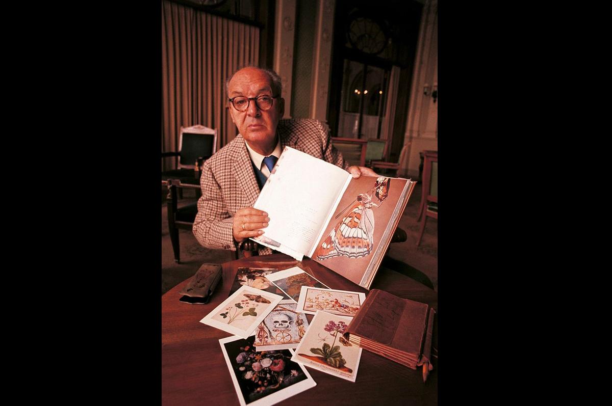 Набоков-энтомолог демонстрирует альбом, 1969. Фотограф — Джузеппе Пино