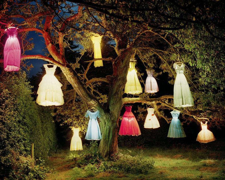 "Тим Уокер, ""Дерево платяных ламп, Англия"", 2002"