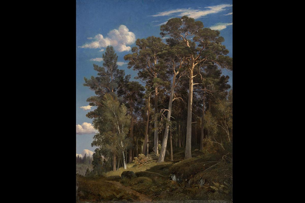 Иван Шишкин. «Сосновый лес», 1866